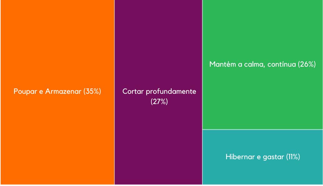 Figura 1: Novos segmentos de comportamento como resposta à crise do Covid-19